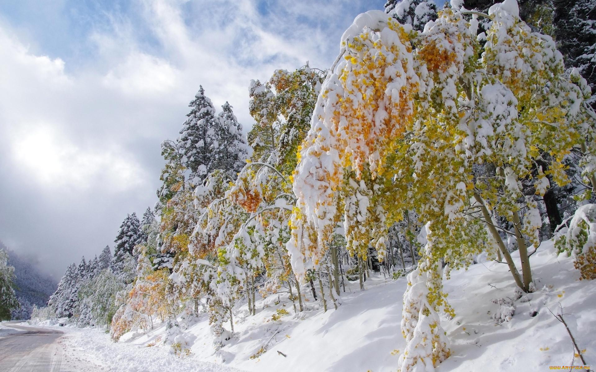 картинки на рабочий стол ранняя зима большие расскажу про одну